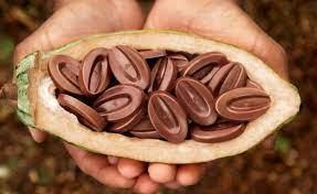 Notre chocolat Valrhona